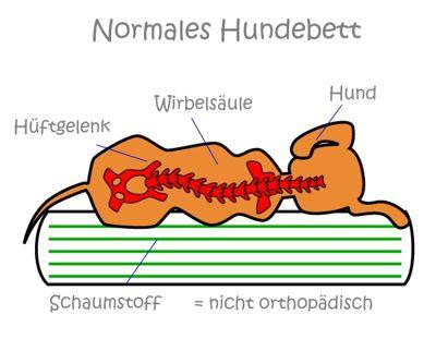 Infografik-normales-hundebett