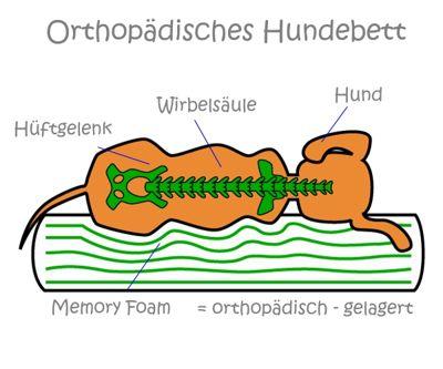 Infografik-orthopaedisches-hundebett1